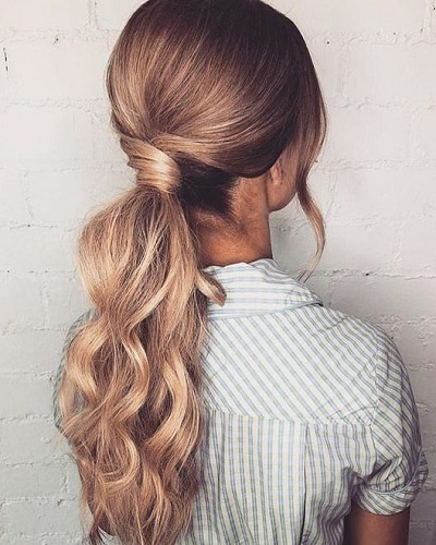 Elegant Low Ponytail