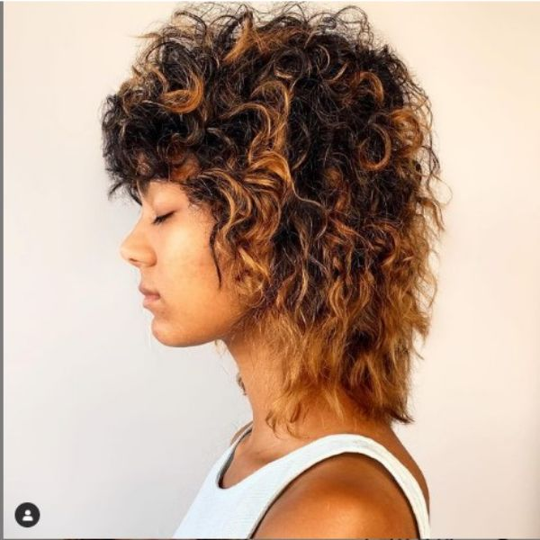 Curly Shag For Brown Hair With Caramel Brown Highlights