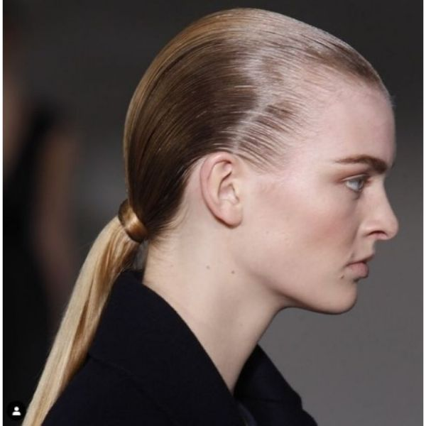 Sleek Low Ponytail For Bright Blonde Thin Hair