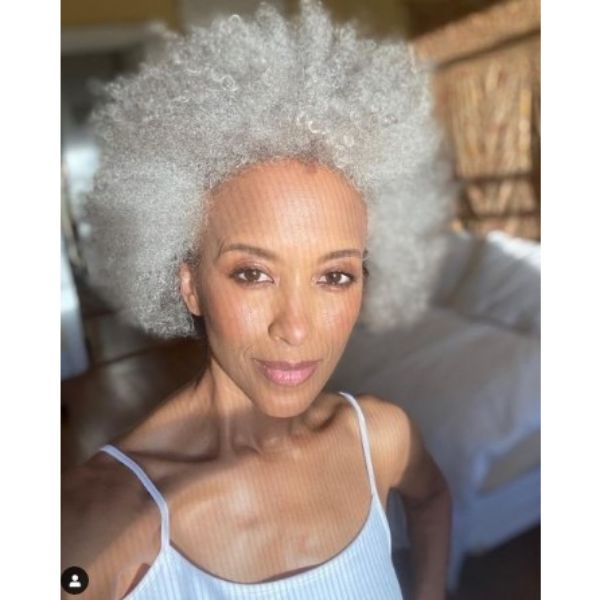 Silver Gray Afro Hairstyles For Older Women